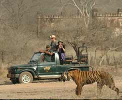Bharatpur Vacation Package