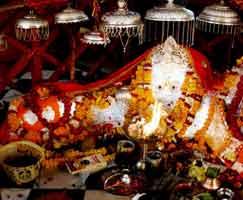 Bharatpur Honeymoon Tour